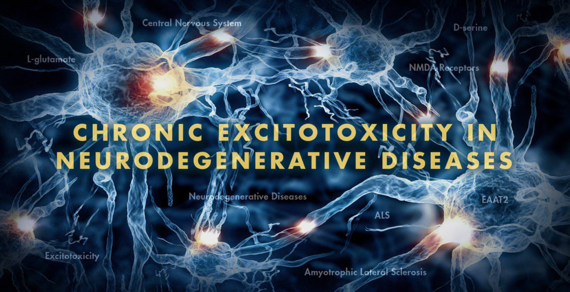 Functional Neurology: Chronic Excitotoxicity in Neurodegenerative Diseases | El Paso, TX Chiropractor | El Paso, TX Chiropractor