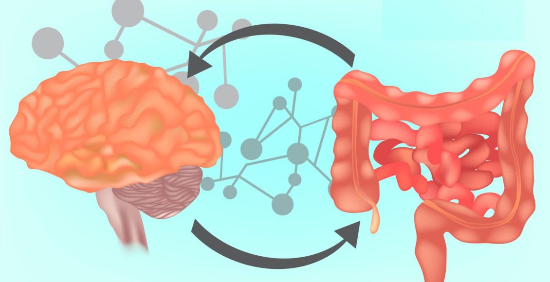 Functional Neurology: What is the Gut-Brain Axis?   El Paso, TX Chiropractor