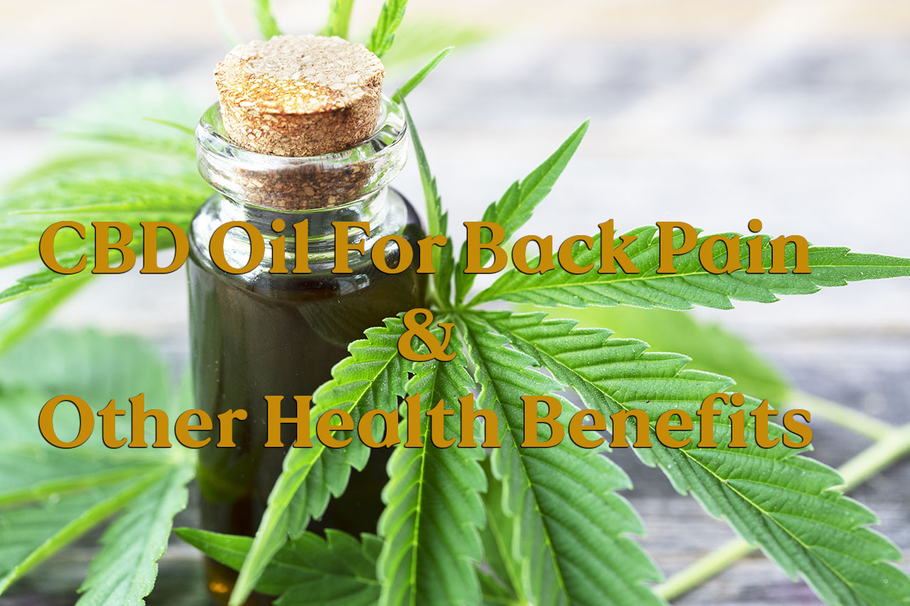 11860 Vista Del Sol, Ste. 128 CBD Oil for Back Pain and Combined Health Benefits
